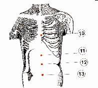 الطب الشعبى    الحجامة \  الكى  *  القصد   ( ملف كامل ) Image007