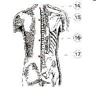 الطب الشعبى    الحجامة \  الكى  *  القصد   ( ملف كامل ) Image008