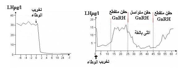 مراقبة إفراز fsh و lh GNRH.JPG